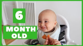 WHAT MY 6 MONTH OLD BABY EATS | BABY LED WEANING