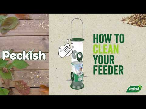 Peckish All Weather Sunflower Heart Feeder in pack Video