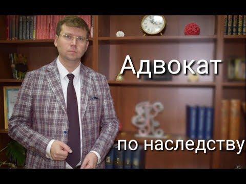 Адвокат по наследству: споры между наследниками в суде