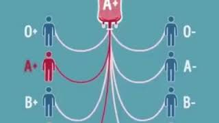Universal blood donor..Universal blood recipients