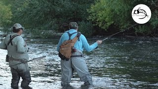 Fly Fishing the Malleo River - ARGENTINA