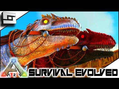 Evolvedfireball - новый тренд смотреть онлайн на сайте