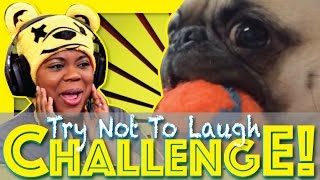 You Laugh You Lose   99.97% WILL LAUGH   Try Not To Laugh Challenge   AyChristene Reacts