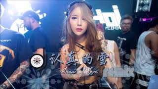 薛之谦 - 认真的雪 DJ Remix ❄️【刘芳 / 翻唱 Cover】『傷感女聲版』