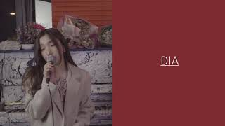 Shallow (A star is born OST - Lady gaga & Bradley Cooper) / Cover by DIA, Seul Bi