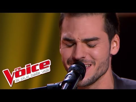 Alicia Keys – If I Ain't Got You | Michaël Lelong | The Voice France 2013 | Blind Audition