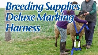 Deluxe Marking Harness