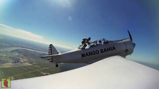 Mango Bahia- #apex