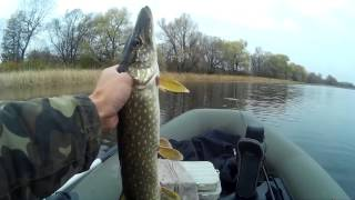 Старый оскол рыбалка на реке ржавец