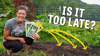 Did I miss my chance for a garden this year? // Homesteading