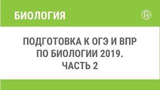 Подготовка к ОГЭ и ВПР по биологии 2019. Часть 2