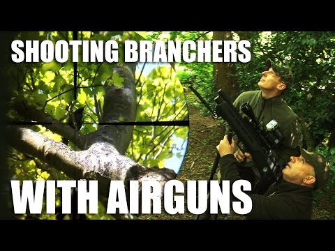 Rooks with Rifles