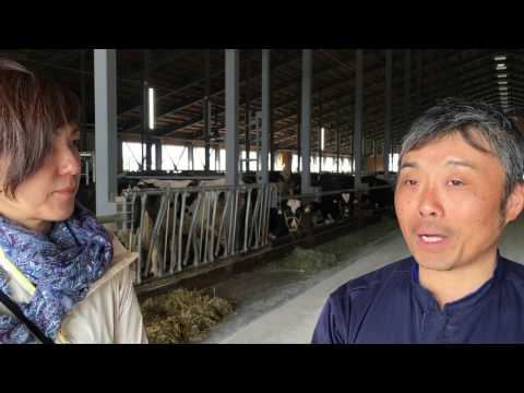 Interview: Efficient dairy farmers in Obihiro