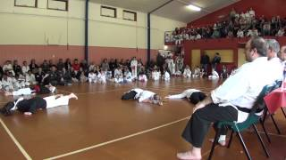 preview picture of video 'wrka kyoso cup ring2 demos finals 03'