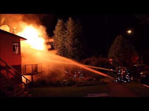 Five Pets Dead After 3rd Alarm Vancouver House Fire