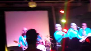 The Aquabats at collective con (cat w 2 heads)