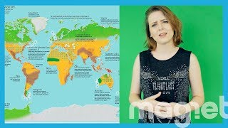 Así quedará el mundo cuando las temperaturas hayan ascendido hasta cuatro grados centígrados