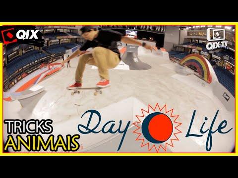 Day Life - Kelvin Hoefler na Estônia