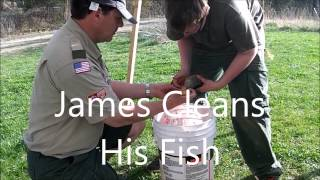 How To Clean My Fish