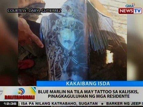 Itlog ng mga bulate hatching period