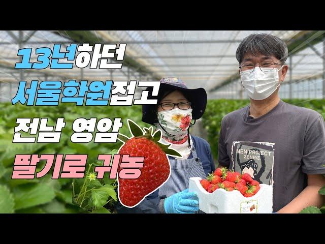 전남 영암-딸기농사 2년만에 억대매출 성공기!