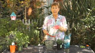 How To Care For Herb Pots Indoors : Garden Space