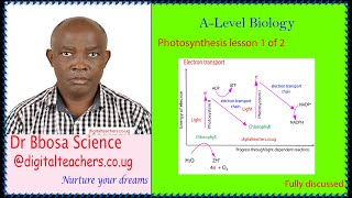 photosynthesis and autotrophic nutrition lesson 1 of 2