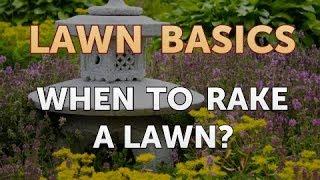 When to Rake a Lawn?