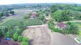 Mjx bugs 20 eis review Dusun dawe pagi hari pasar kliwon