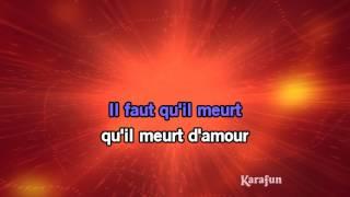 Karaoké Requiem Pour Un Fou (Live)   Johnny Hallyday *