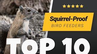 Best Squirrel Proof Bird Feeders (2020)