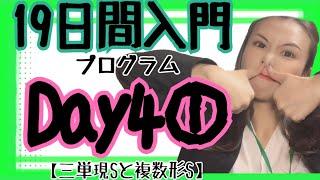 【英文法】19日間入門プログラムDay4①/③【三単現S/複数形S】[#40]