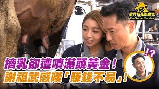 【金牌特務 謝祖武】擠乳卻遭噴滿頭黃金!謝祖武感嘆「賺錢不易」!