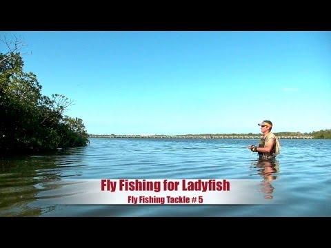 Agua Salada Pesca con Mosca - Jacks y Ladyfish Florida USA