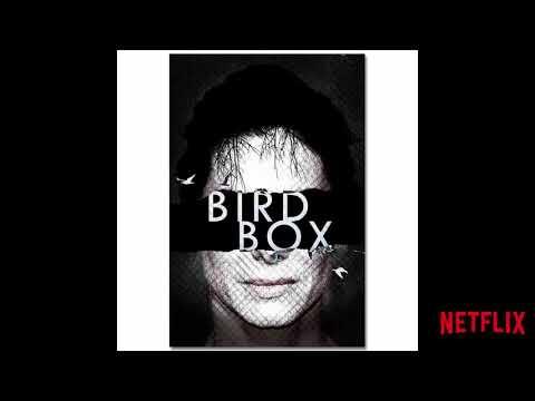 Netflix Movie Bird Box Poster Wall Art Painting