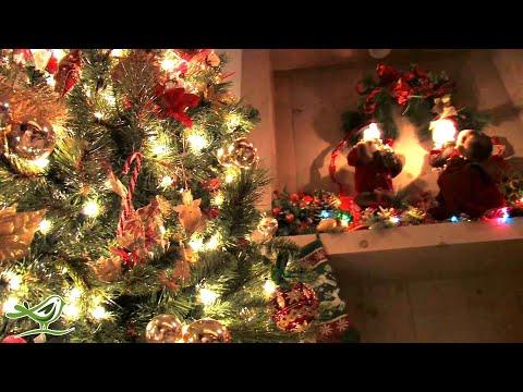 O Come All Ye Faithful   Instrumental Christmas Music   Christmas Song