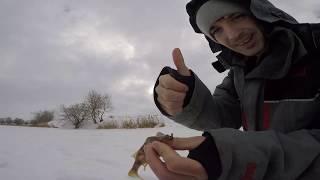 Отчеты о рыбалке в тамбовской области