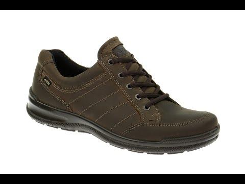 Ecco Remote Herren Gore-Tex Schuhe dunkelbraun (136-31-0019)