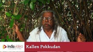 Kallen Pokkudan about Mangrove Forest