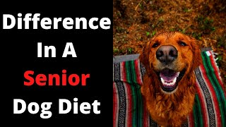 Is There A Difference In A Senior Dog Diet