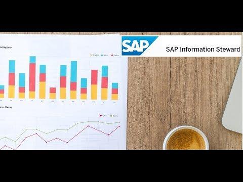 SAP Information Steward - Course Intro - YouTube