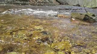 Beautiful River Water Sounds To Enjoy - Video Youtube