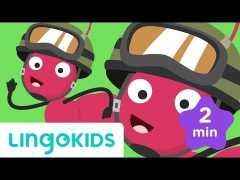 The Ants Go Marching - Song & Lyrics | Lingokids - School Readiness in English