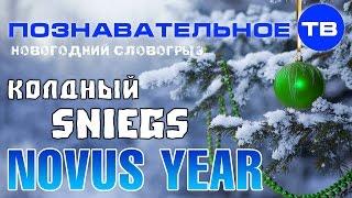 Новогодний Словогрыз: Колдный sniegs Novus year (Познавательное ТВ, Артём Войтенков)