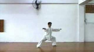 Chen Style Taiji Quan 24 Form 陳式太極拳24式