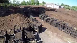 Запуск Самой Крупной Вермифермы В Украине