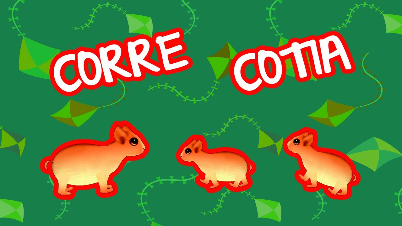 CORRE COTIA | BEBÊ MAIS NÚMEROS