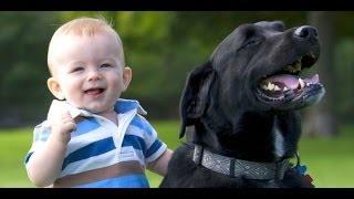 Ржач, Ребенок и Собака, Посмеёмся Вместе, Прикол