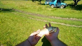 Отчеты о рыбалке на реке реня