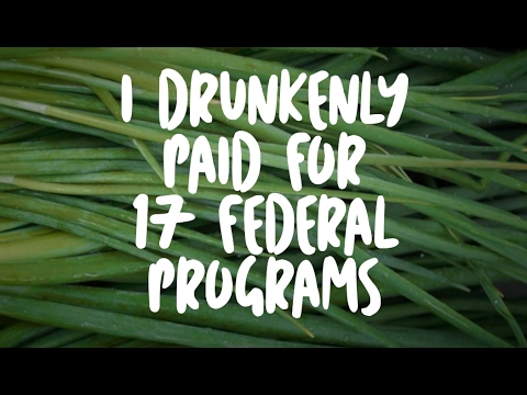 I Drunkenly Paid For 17 Federal Programs